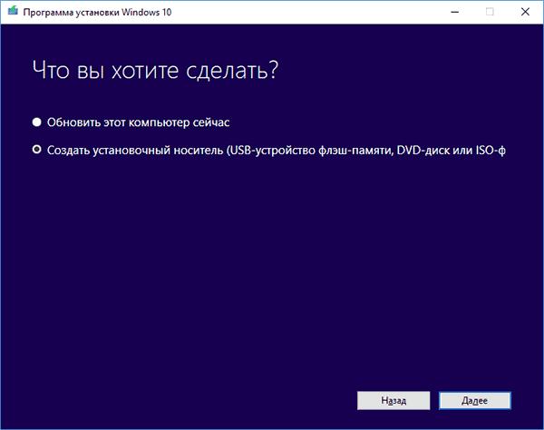 Окно «Что вы хотите сделать?» в «Программе установки Windows 10»