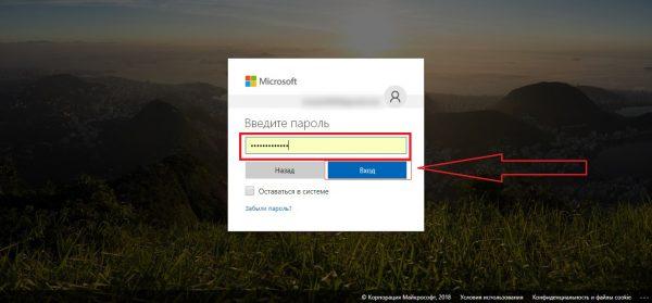 Окно с вводом пароля