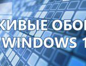 анимационные обои windows 10