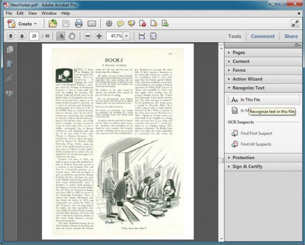Окно программы Adobe Reader