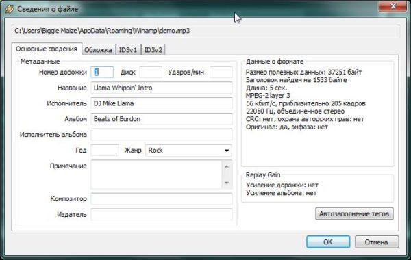 Окно настроек изменения метаданных аудиофайла через Winamp