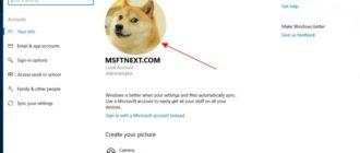 собака мемама аватар на windows 10