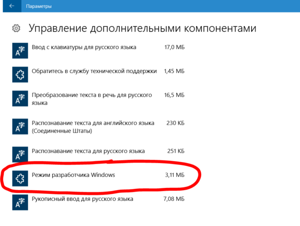 Пункт «Режим разработчика Windows»